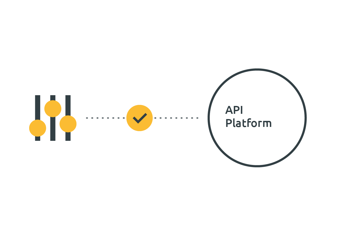 API platform integration
